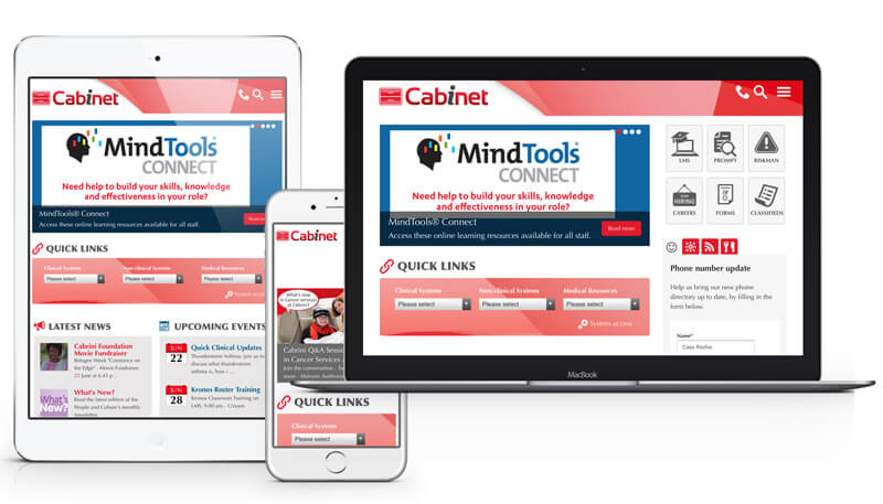 Cabrini Intranet Solution Example